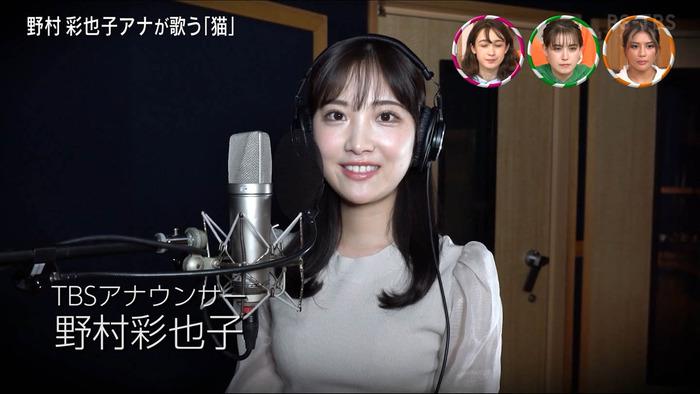 野村彩也子アナのブラサイズ